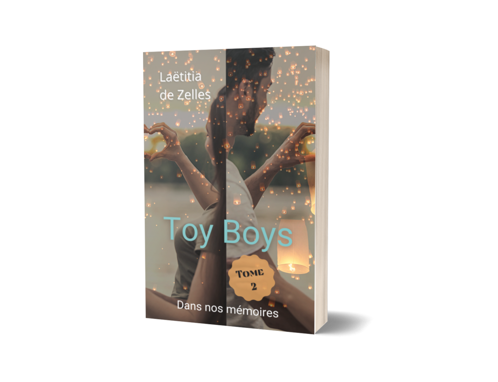 broche-toy-boys-tome-2